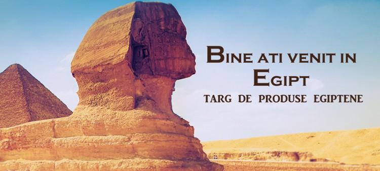 online-expozitie-egipt